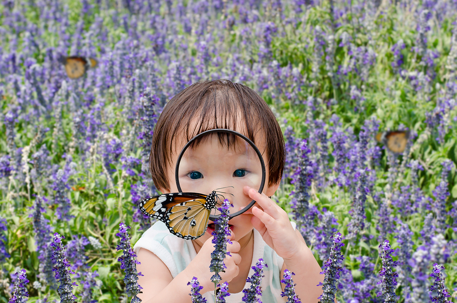 Little Asian girl looking at butterfly with magnifying glass in flower field